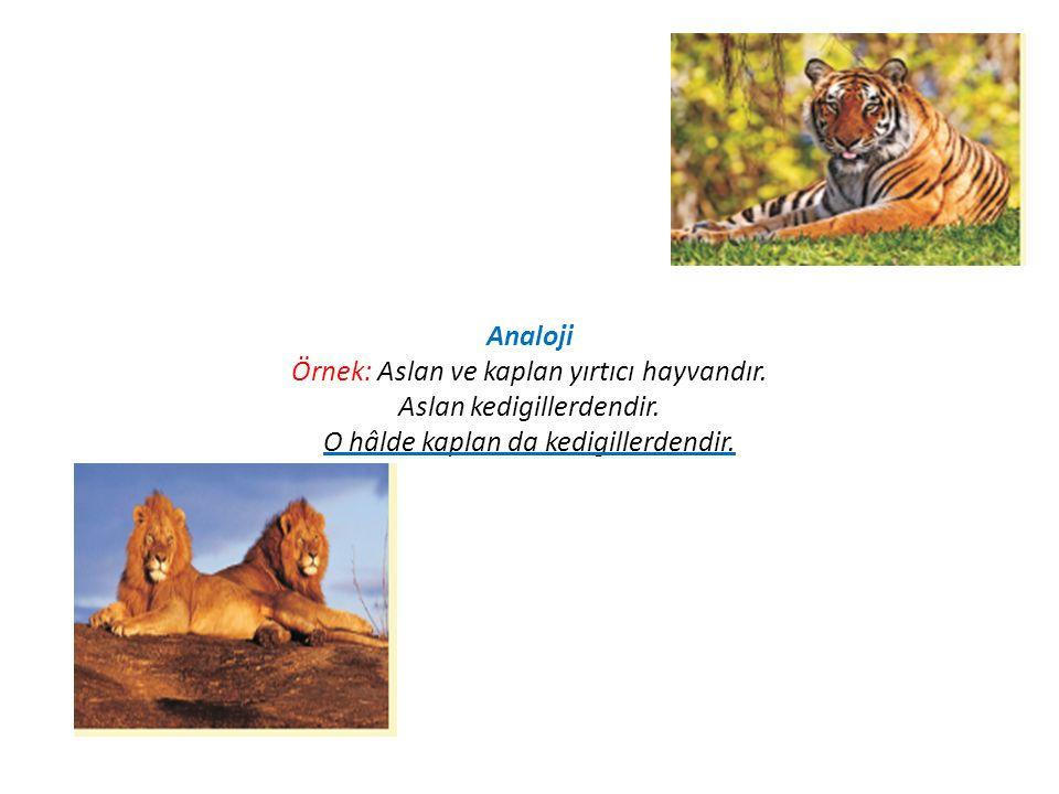 Analoji Örnek: Aslan ve kaplan yırtıcı hayvandır. Aslan kedigillerdendir. O hâlde kaplan da kedigillerdendir.