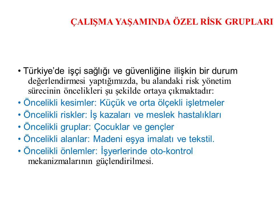 ÇALIŞMA YAŞAMINDA ÖZEL RİSK GRUPLARI Türkiye'de işçi sağlığı ve güvenliğine ilişkin bir durum değerlendirmesi yaptığımızda, bu alandaki risk yönetim s