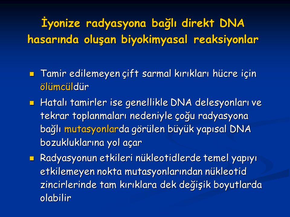 İyonize radyasyona bağlı direkt DNA hasarında oluşan biyokimyasal reaksiyonlar Tamir edilemeyen çift sarmal kırıkları hücre için ölümcüldür Tamir edil