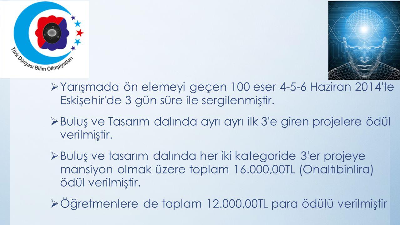  Yarışmada ön elemeyi geçen 100 eser 4-5-6 Haziran 2014 te Eskişehir de 3 gün süre ile sergilenmiştir.