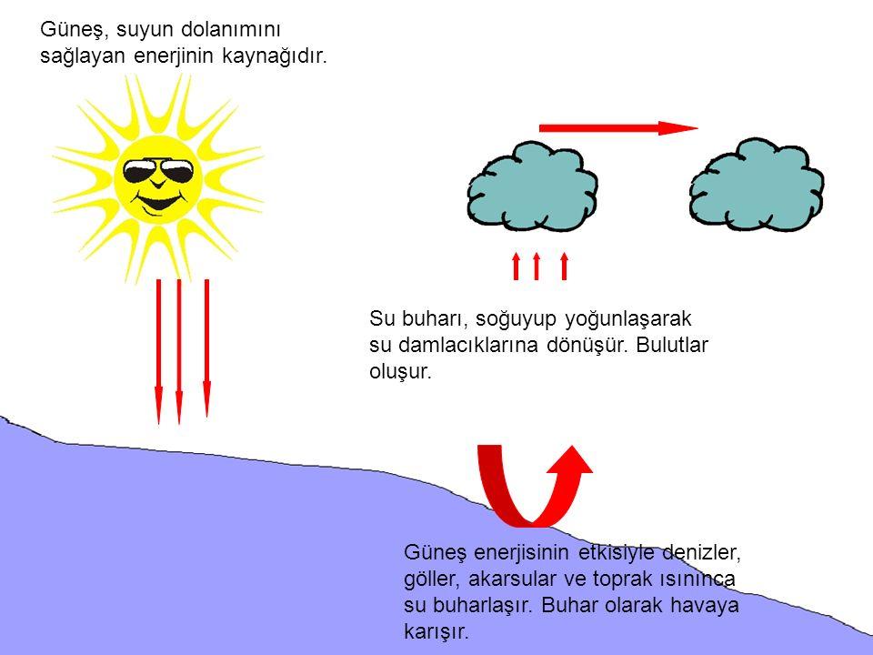 Güneş, suyun dolanımını sağlayan enerjinin kaynağıdır. Güneş enerjisinin etkisiyle denizler, göller, akarsular ve toprak ısınınca su buharlaşır. Buhar