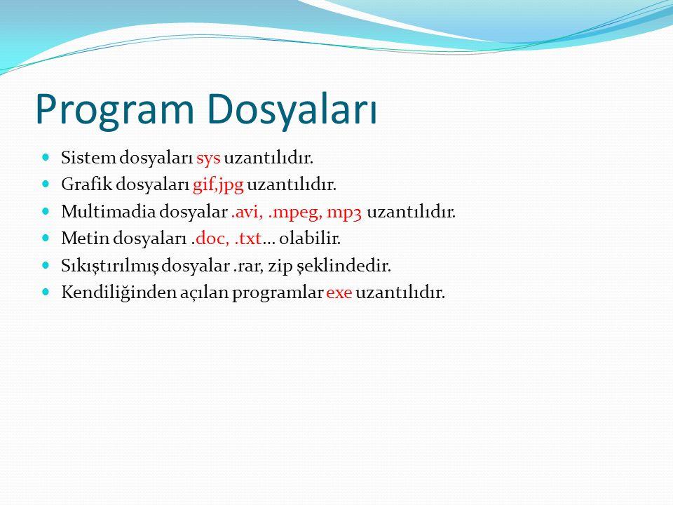 Program Dosyaları Sistem dosyaları sys uzantılıdır.