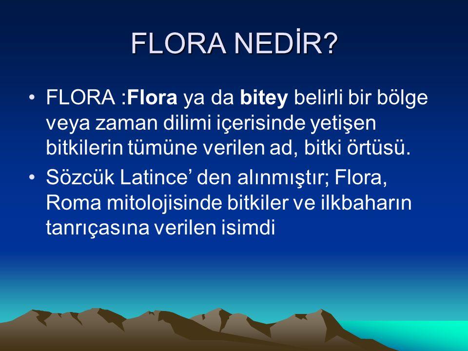FLORA NEDİR.