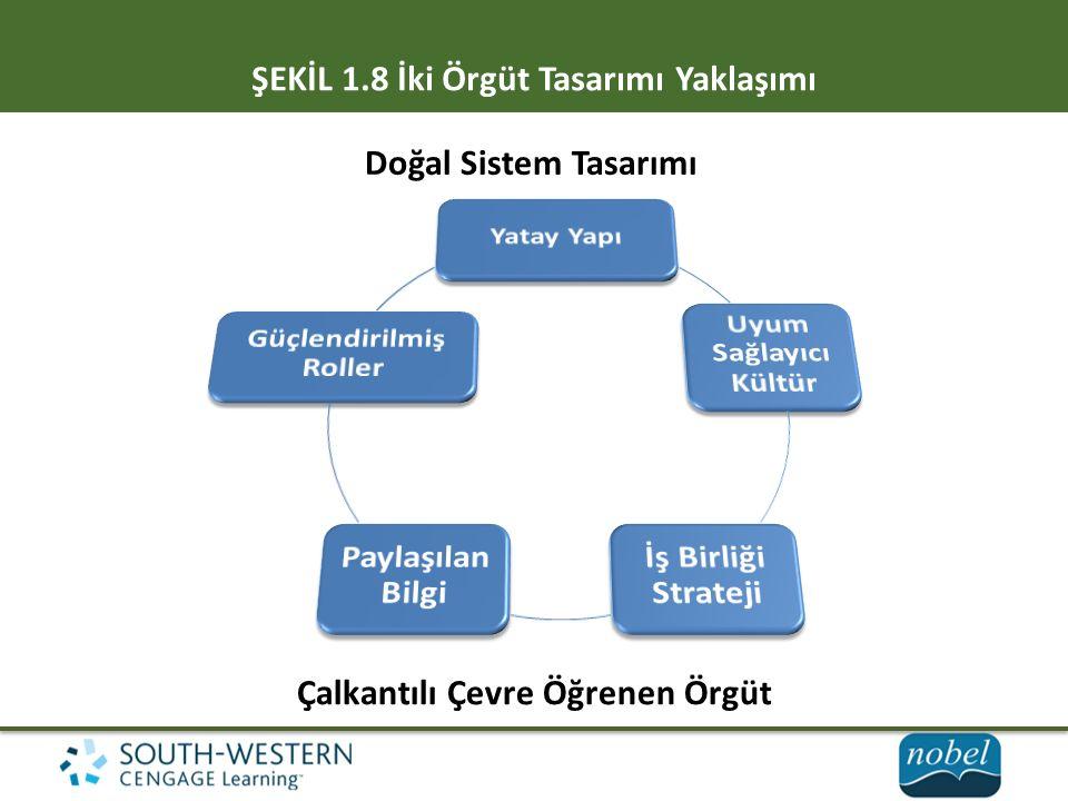ŞEKİL 1.8 İki Örgüt Tasarımı Yaklaşımı Doğal Sistem Tasarımı Çalkantılı Çevre Öğrenen Örgüt