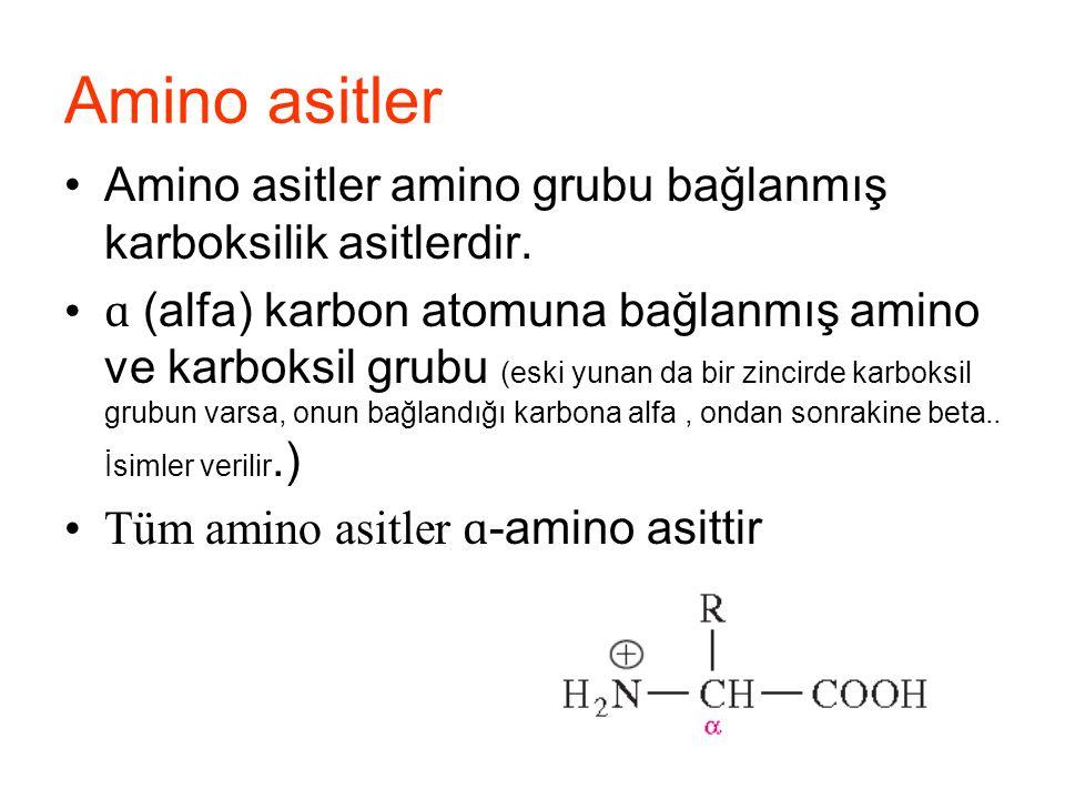 Amino asitler Amino asitler amino grubu bağlanmış karboksilik asitlerdir.