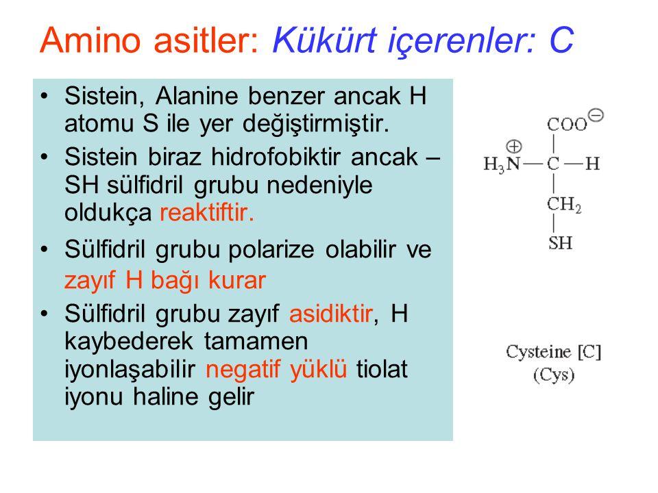 Sistein, Alanine benzer ancak H atomu S ile yer değiştirmiştir.