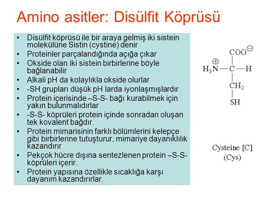 Disülfit köprüsü ile bir araya gelmiş iki sistein molekülüne Sistin (cystine) denir Proteinler parçalandığında açığa çıkar Okside olan iki sistein birbirlerine böyle bağlanabilir Alkali pH da kolaylıkla okside olurlar -SH grupları düşük pH larda iyonlaşmışlardır Protein içerisinde –S-S- bağı kurabilmek için yakın bulunmalıdırlar -S-S- köprüleri protein içinde sonradan oluşan tek kovalent bağdır.