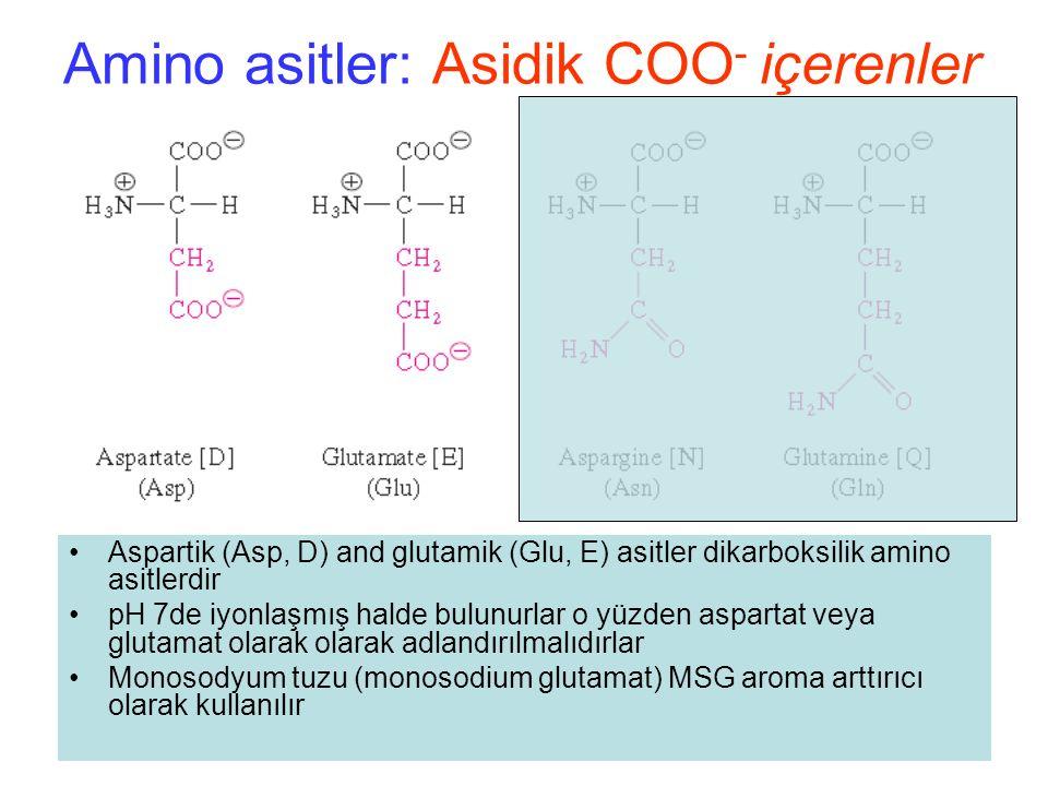 Amino asitler: Asidik COO - içerenler Aspartik (Asp, D) and glutamik (Glu, E) asitler dikarboksilik amino asitlerdir pH 7de iyonlaşmış halde bulunurlar o yüzden aspartat veya glutamat olarak olarak adlandırılmalıdırlar Monosodyum tuzu (monosodium glutamat) MSG aroma arttırıcı olarak kullanılır