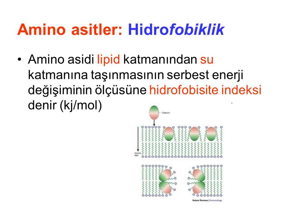 Amino asitler: Hidrofobiklik Amino asidi lipid katmanından su katmanına taşınmasının serbest enerji değişiminin ölçüsüne hidrofobisite indeksi denir (kj/mol)