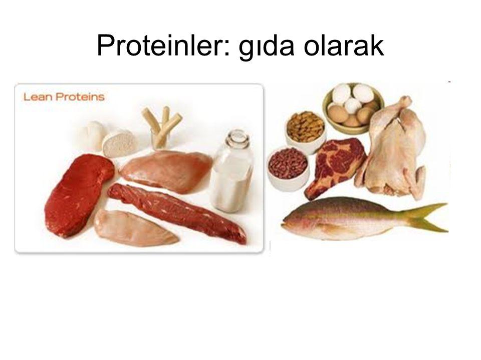 Protein dizilişini belirleme: Proteaz parçalaması