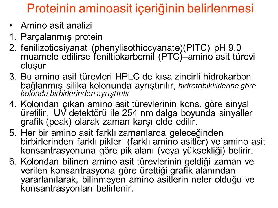 Amino asit analizi 1.Parçalanmış protein 2.fenilizotiosiyanat (phenylisothiocyanate)(PITC) pH 9.0 muamele edilirse feniltiokarbomil (PTC)–amino asit türevi oluşur 3.Bu amino asit türevleri HPLC de kısa zincirli hidrokarbon bağlanmış silika kolonunda ayrıştırılır, hidrofobikliklerine göre kolonda birbirlerinden ayrıştırılır 4.Kolondan çıkan amino asit türevlerinin kons.