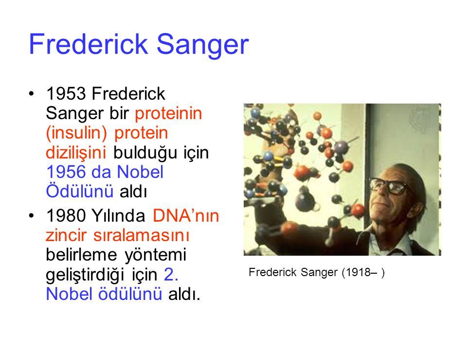 Frederick Sanger 1953 Frederick Sanger bir proteinin (insulin) protein dizilişini bulduğu için 1956 da Nobel Ödülünü aldı 1980 Yılında DNA'nın zincir sıralamasını belirleme yöntemi geliştirdiği için 2.