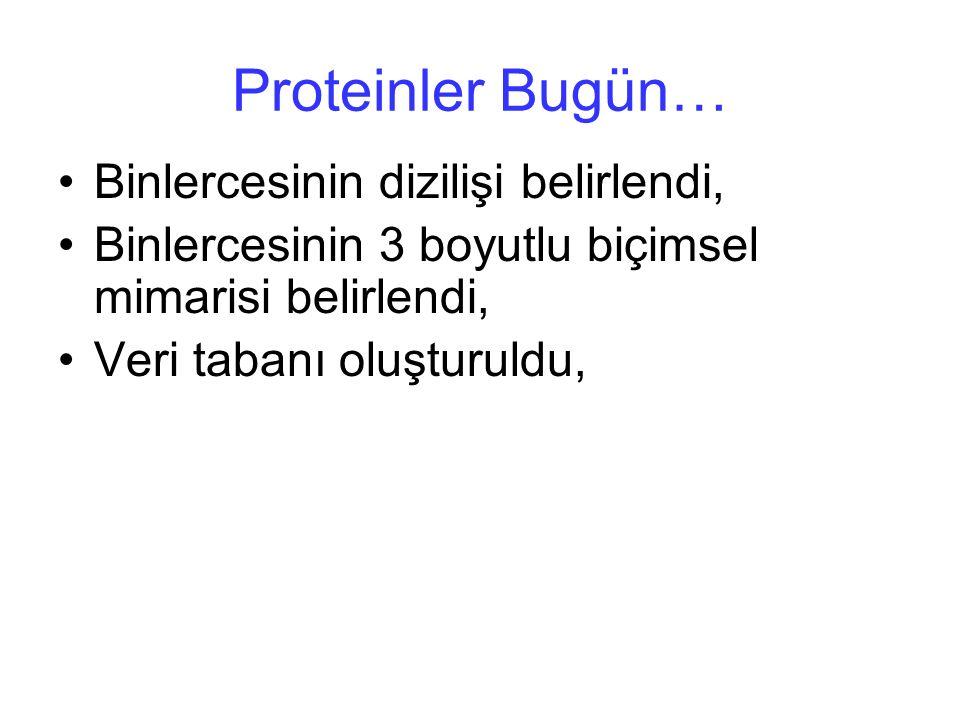 Proteinler Bugün… Binlercesinin dizilişi belirlendi, Binlercesinin 3 boyutlu biçimsel mimarisi belirlendi, Veri tabanı oluşturuldu,