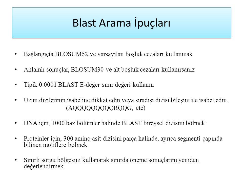 Blast Arama İpuçları Başlangıçta BLOSUM62 ve varsayılan boşluk cezaları kullanmak Anlamlı sonuçlar, BLOSUM30 ve alt boşluk cezaları kullanırsanız Tipi