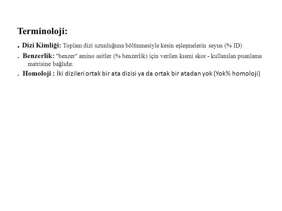 Terminoloji:. Dizi Kimliği: Toplam dizi uzunluğuna bölünmesiyle kesin eşleşmelerin sayısı (% ID). Benzerlik: