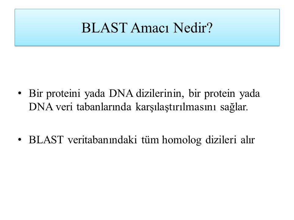 BLAST Amacı Nedir? Bir proteini yada DNA dizilerinin, bir protein yada DNA veri tabanlarında karşılaştırılmasını sağlar. BLAST veritabanındaki tüm hom