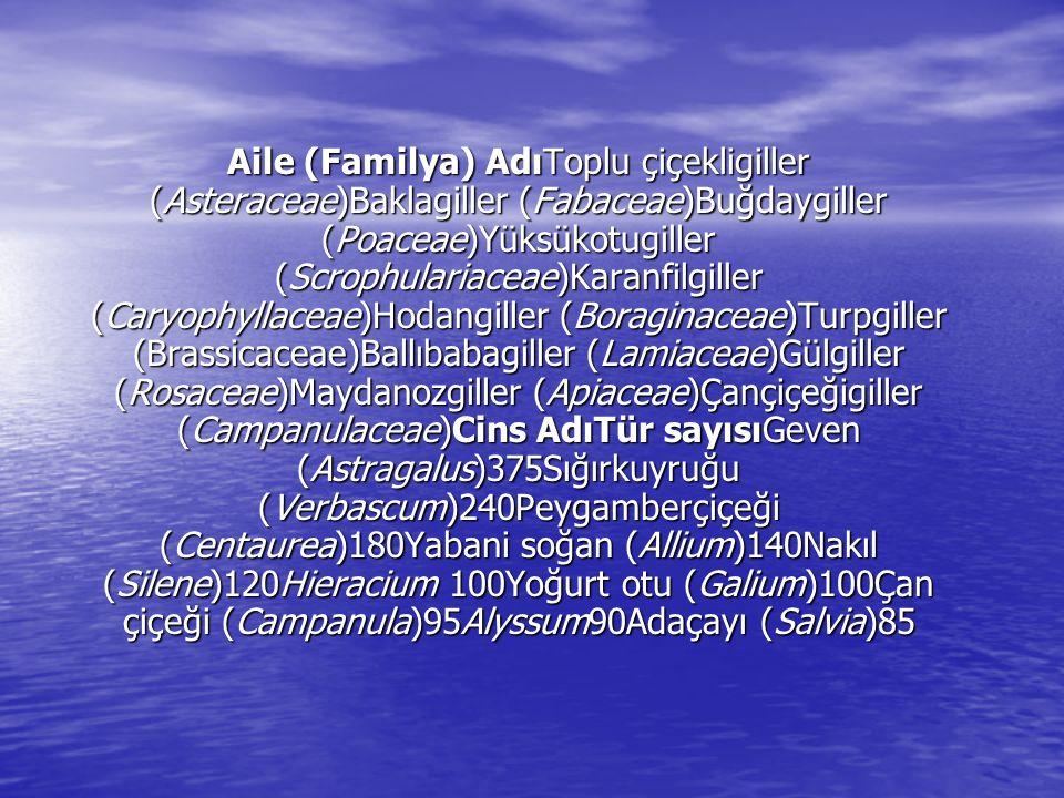 Aile (Familya) AdıToplu çiçekligiller (Asteraceae)Baklagiller (Fabaceae)Buğdaygiller (Poaceae)Yüksükotugiller (Scrophulariaceae)Karanfilgiller (Caryop