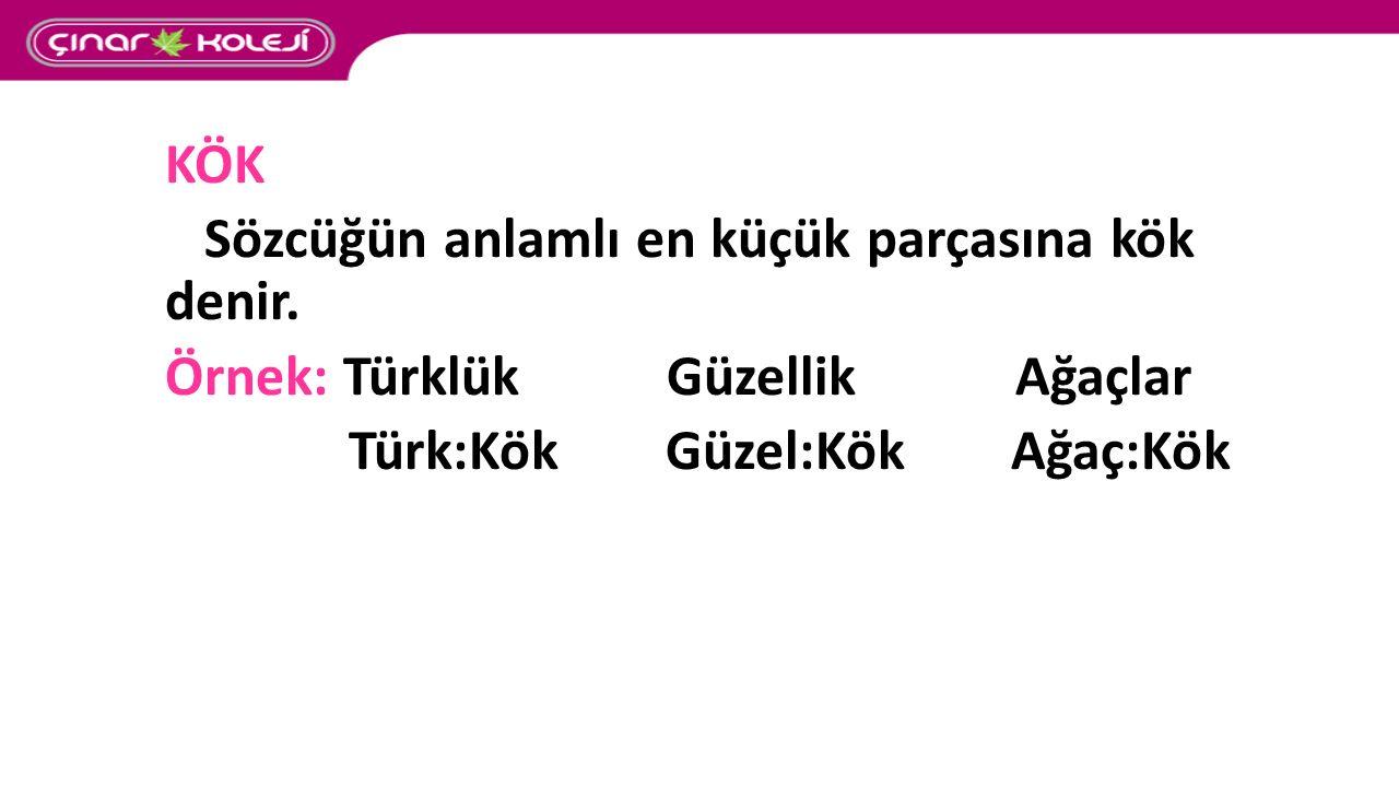 KÖK Sözcüğün anlamlı en küçük parçasına kök denir. Örnek: Türklük Güzellik Ağaçlar Türk:Kök Güzel:Kök Ağaç:Kök