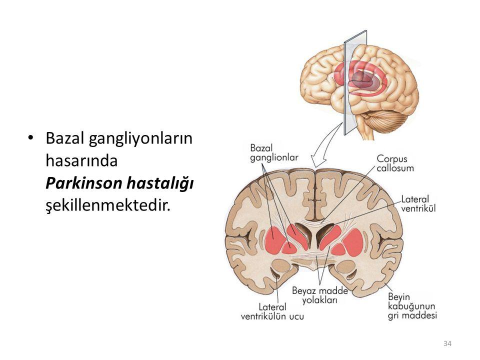 34 Bazal gangliyonların hasarında Parkinson hastalığı şekillenmektedir.