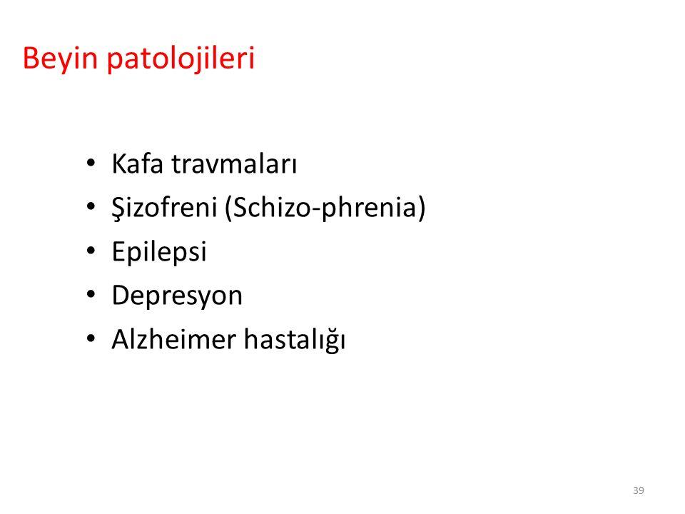 39 Kafa travmaları Şizofreni (Schizo-phrenia) Epilepsi Depresyon Alzheimer hastalığı Beyin patolojileri