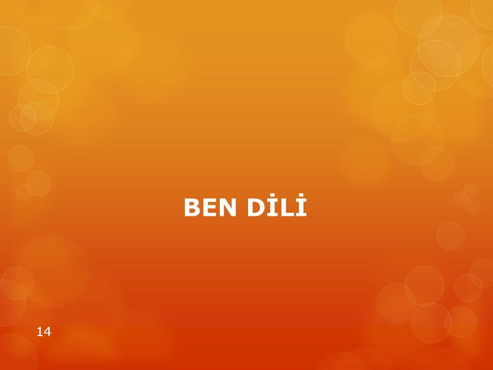 BEN DİLİ 14
