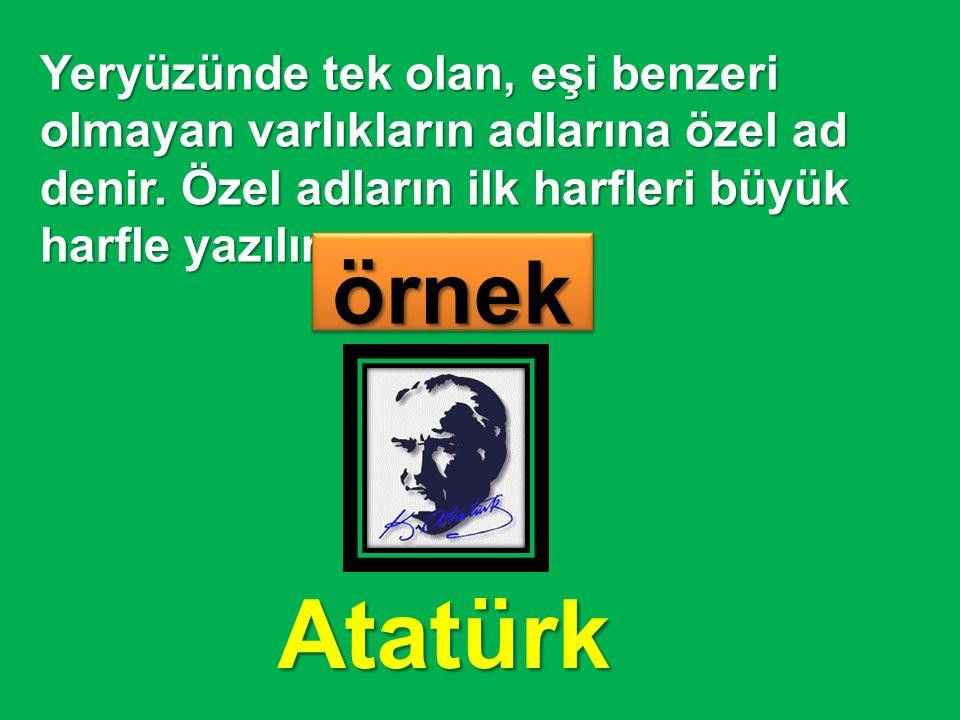 Yeryüzünde tek olan, eşi benzeri olmayan varlıkların adlarına özel ad denir. Özel adların ilk harfleri büyük harfle yazılır. örnekörnek Atatürk