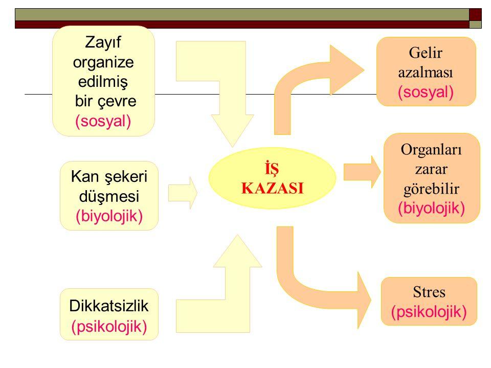 Zayıf organize edilmiş bir çevre (sosyal) Kan şekeri düşmesi (biyolojik) Dikkatsizlik (psikolojik) İŞ KAZASI Organları zarar görebilir (biyolojik) Gel