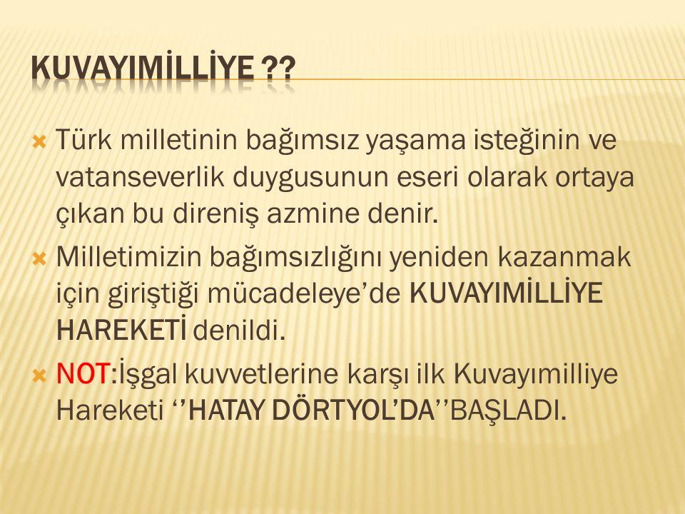  Türk milletinin bağımsız yaşama isteğinin ve vatanseverlik duygusunun eseri olarak ortaya çıkan bu direniş azmine denir.  Milletimizin bağımsızlığı