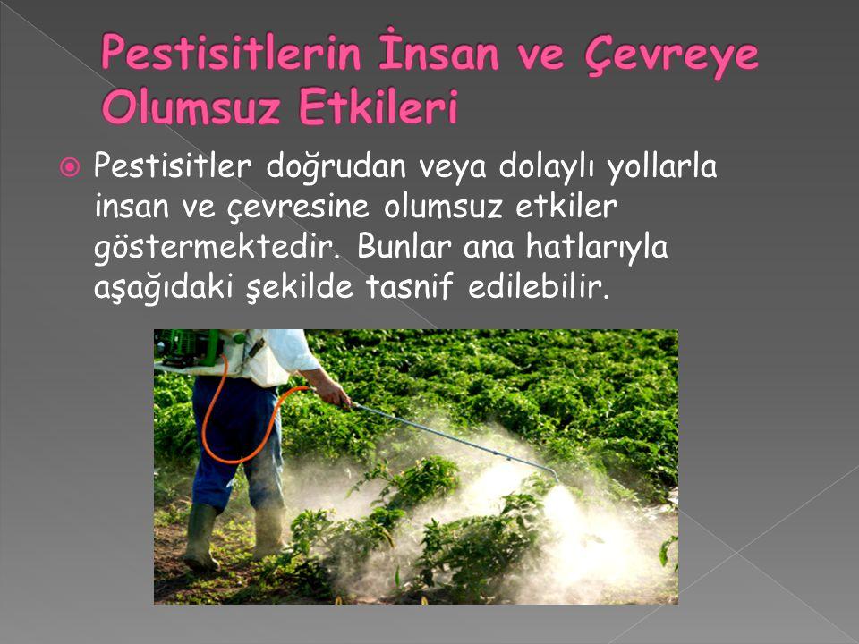  Pestisitler doğrudan veya dolaylı yollarla insan ve çevresine olumsuz etkiler göstermektedir. Bunlar ana hatlarıyla aşağıdaki şekilde tasnif edilebi