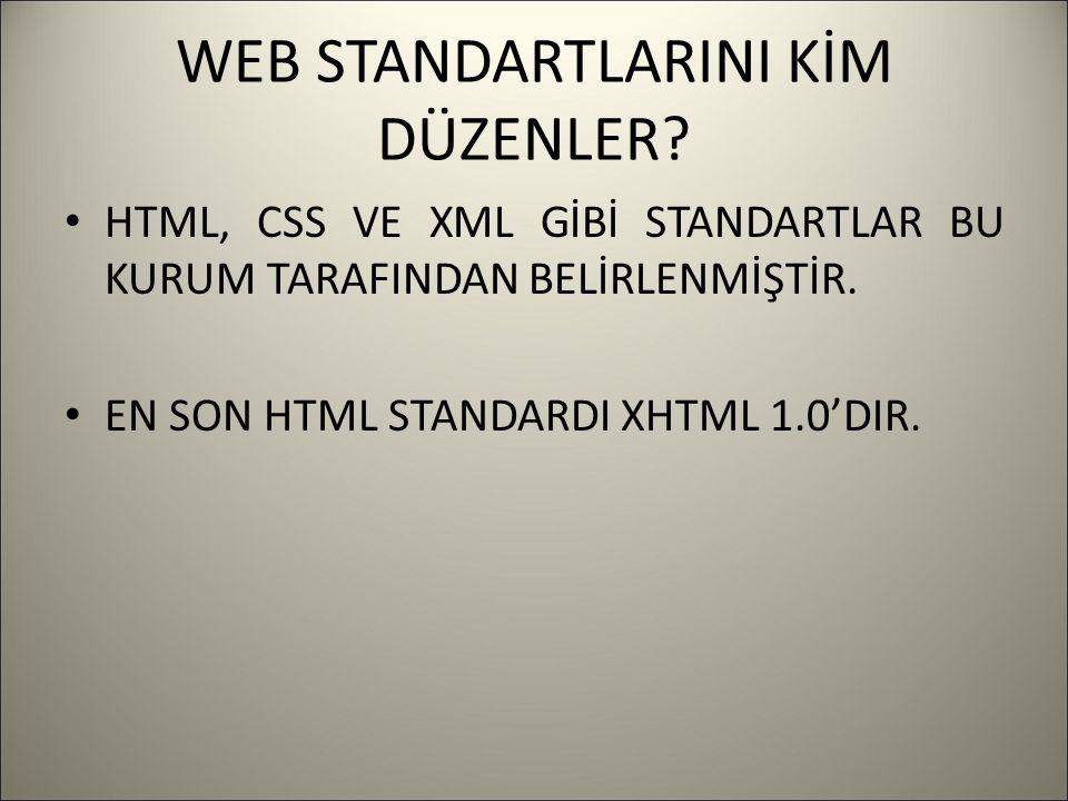 WEB STANDARTLARINI KİM DÜZENLER.