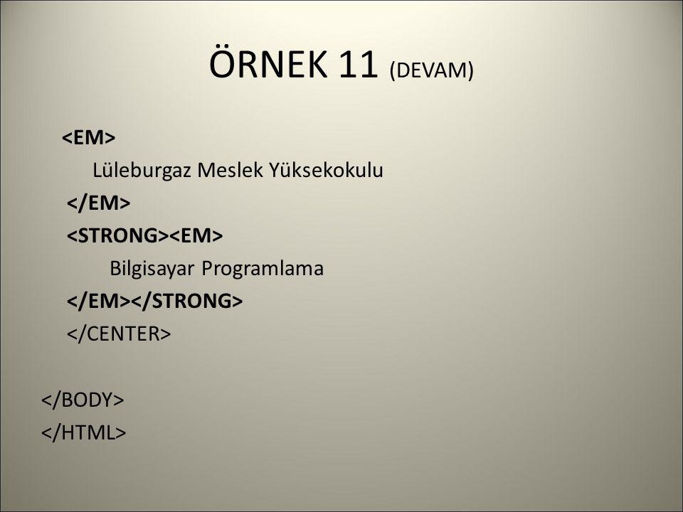 ÖRNEK 11 (DEVAM) Lüleburgaz Meslek Yüksekokulu Bilgisayar Programlama