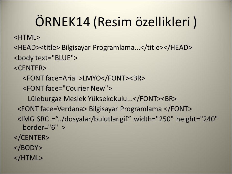 ÖRNEK14 (Resim özellikleri ) Bilgisayar Programlama... LMYO Lüleburgaz Meslek Yüksekokulu... Bilgisayar Programlama