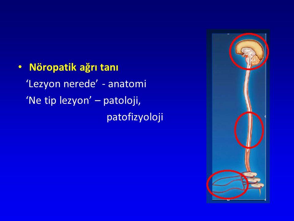 Nöropatik ağrıda derecelendirme 3.