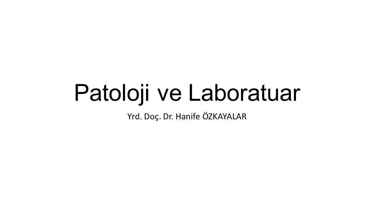 Patoloji ve Laboratuar Yrd. Doç. Dr. Hanife ÖZKAYALAR
