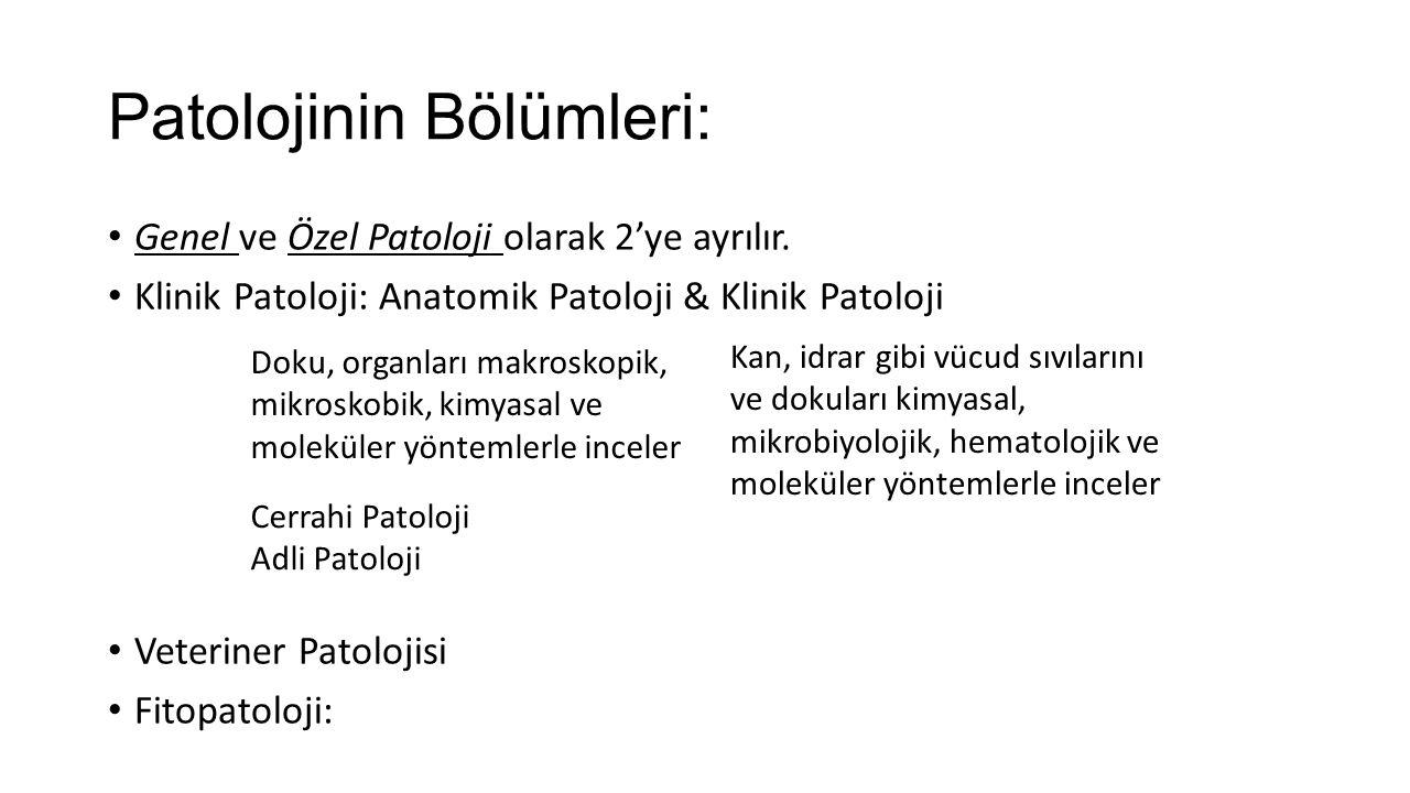 Patolojinin Bölümleri: Genel ve Özel Patoloji olarak 2'ye ayrılır. Klinik Patoloji: Anatomik Patoloji & Klinik Patoloji Veteriner Patolojisi Fitopatol