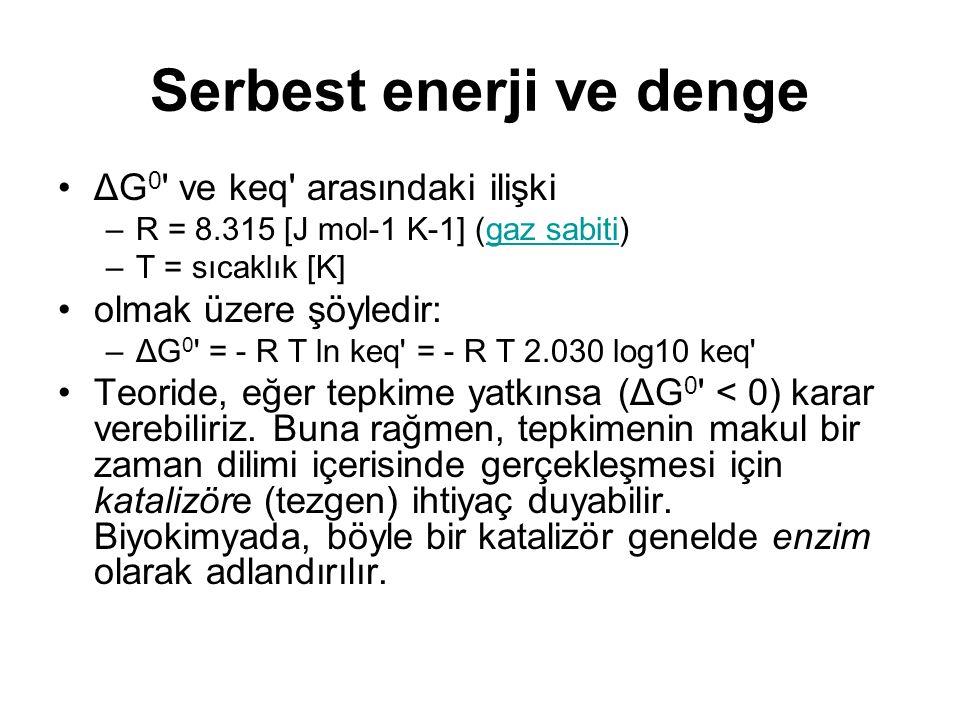 ΔG 0 ' ve keq' arasındaki ilişki –R = 8.315 [J mol-1 K-1] (gaz sabiti)gaz sabiti –T = sıcaklık [K] olmak üzere şöyledir: –ΔG 0 ' = - R T ln keq' = - R