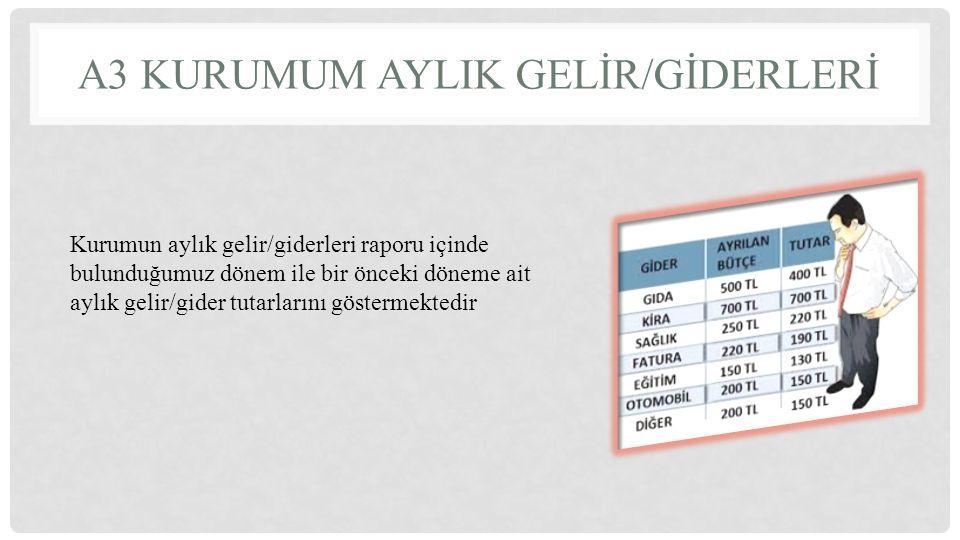 Kurumun aylık gelir/giderleri raporu içinde bulunduğumuz dönem ile bir önceki döneme ait aylık gelir/gider tutarlarını göstermektedir