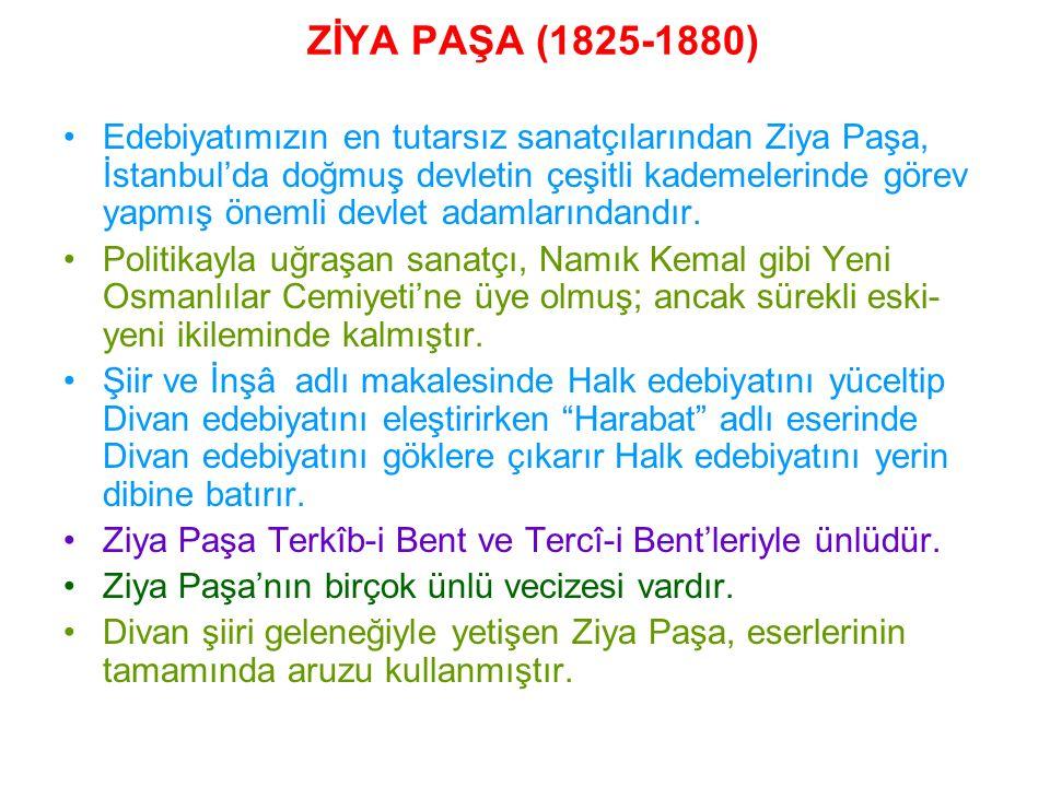 Eserleri: Harabat ( Türkçe, Arapça, Farsça şiir Antolojisi), Zafername (üç bölümlük manzum bir eserdir, sadrazam Ali Paşa'yı üstü örtülü bir şekilde yermiştir) Eş'arı Ziya, Külliyat-ı Ziya Paşa (şiir) Defter-i Amal (çocukluk anıları) Şiir ve İnşa ( makale) Rüya, Veraset Mektupları (düzyazı) Emile, Engizisyon Tarihi, Endülüs Tarihi (çeviri)