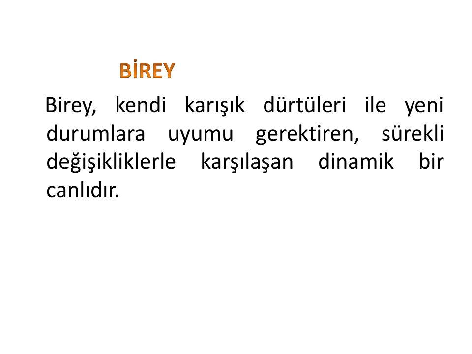 Birey;