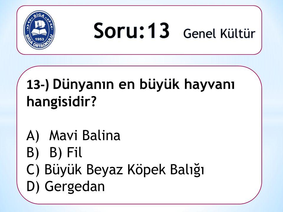 13-) Dünyanın en büyük hayvanı hangisidir? A)Mavi Balina B)B) Fil C) Büyük Beyaz Köpek Balığı D) Gergedan