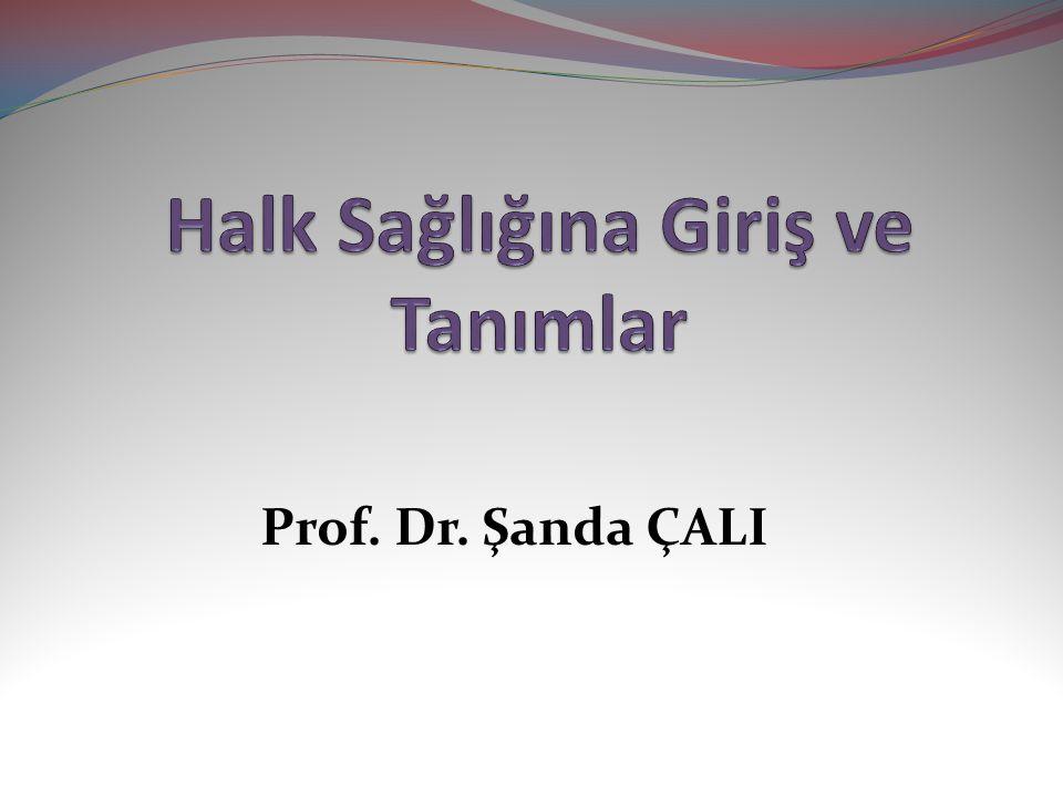 Prof. Dr. Şanda ÇALI