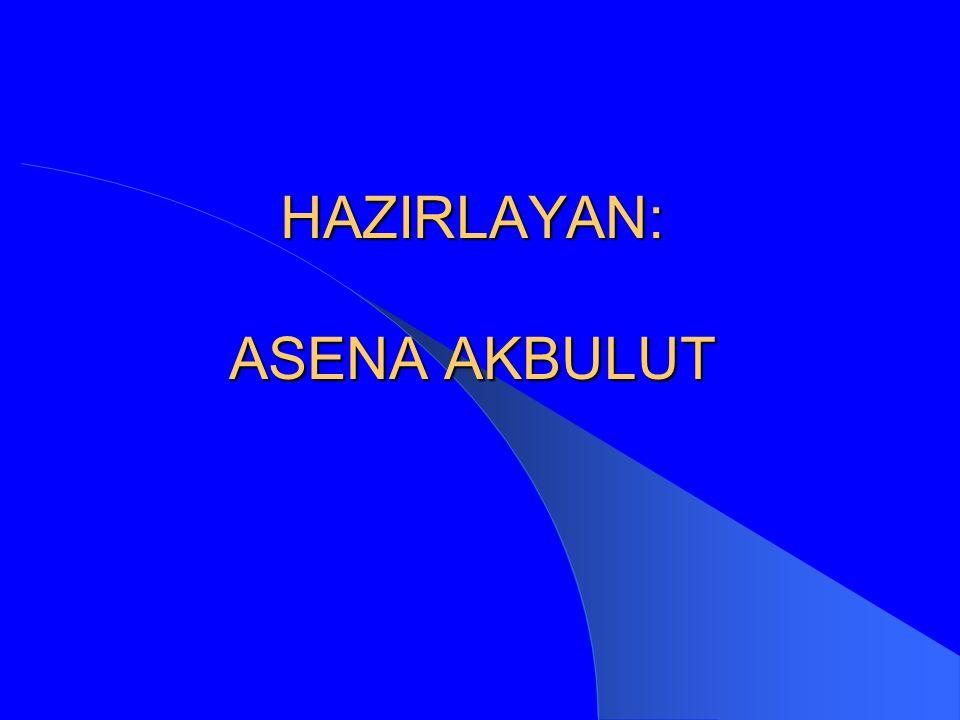 HAZIRLAYAN: ASENA AKBULUT