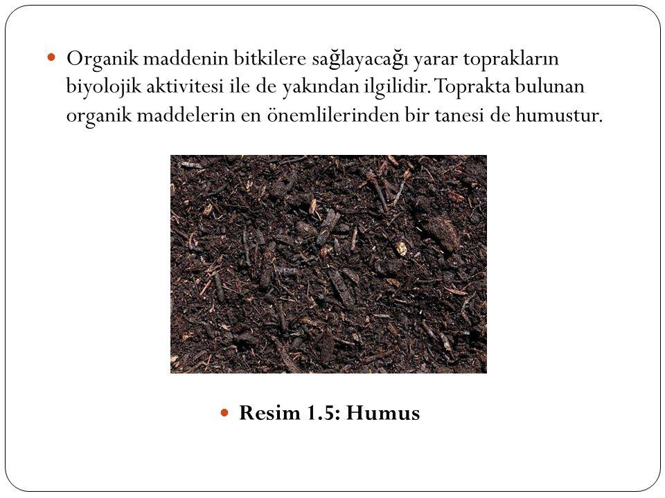 Organik maddenin bitkilere sa ğ layaca ğ ı yarar toprakların biyolojik aktivitesi ile de yakından ilgilidir. Toprakta bulunan organik maddelerin en ön