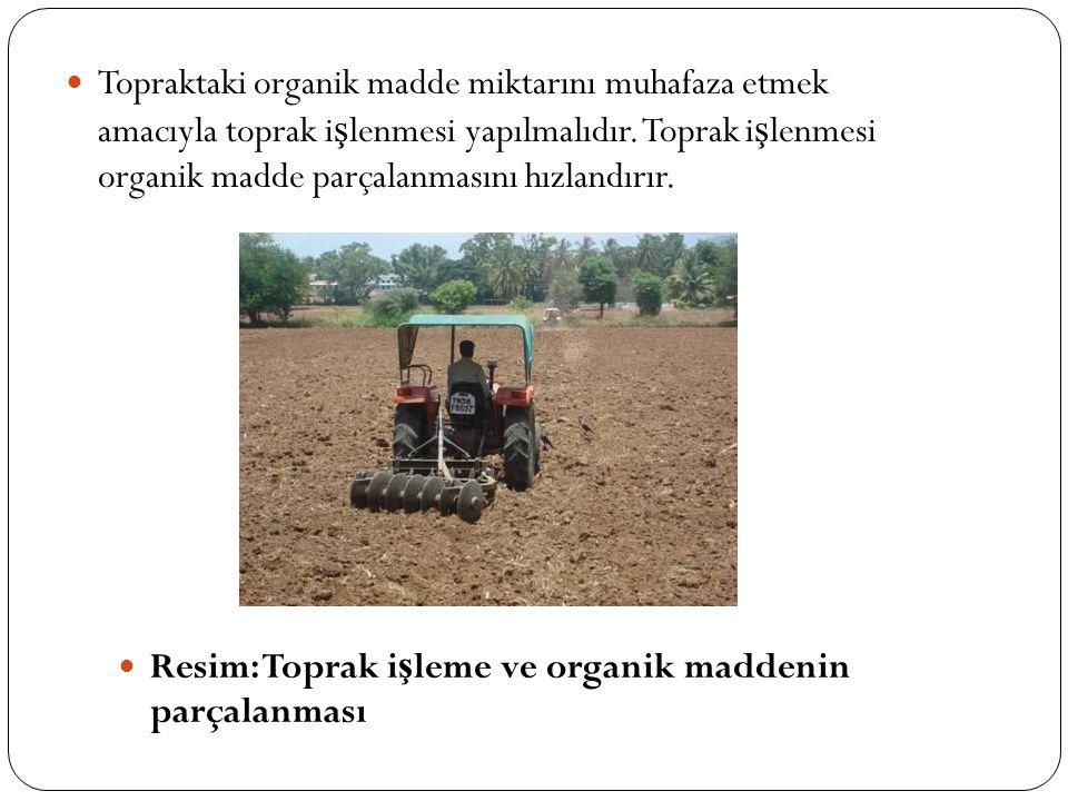 Topraktaki organik madde miktarını muhafaza etmek amacıyla toprak i ş lenmesi yapılmalıdır. Toprak i ş lenmesi organik madde parçalanmasını hızlandırı