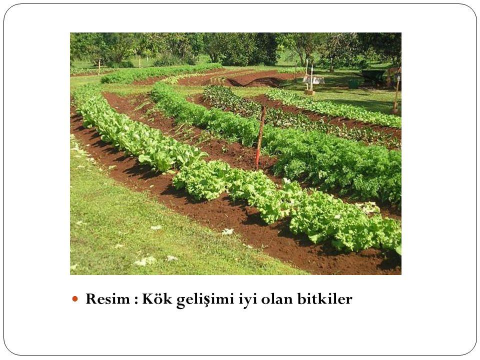  Topra ğ a verilecek organik materyal, toprak yüzeyi yerine bitki kökleri civarına ve 20–25 cm derinli ğ e verilmelidir.