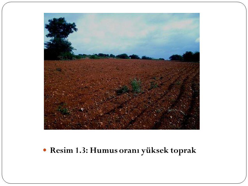 Organik tarımda bitkilerin ihtiyacı olan bitki besin maddelerinin dengeli olarak verilebilmesi için topraktaki organik maddelerin iyi yönetilmesi gerekir.