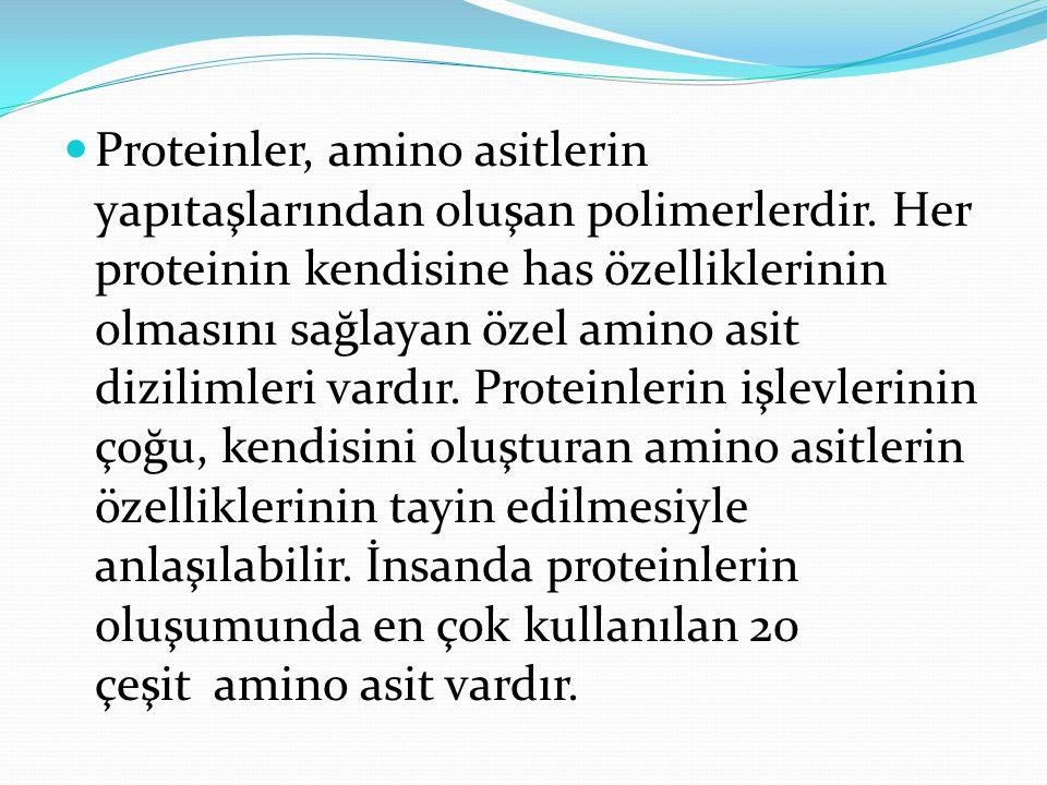 Proteinler, amino asitlerin yapıtaşlarından oluşan polimerlerdir. Her proteinin kendisine has özelliklerinin olmasını sağlayan özel amino asit dizilim