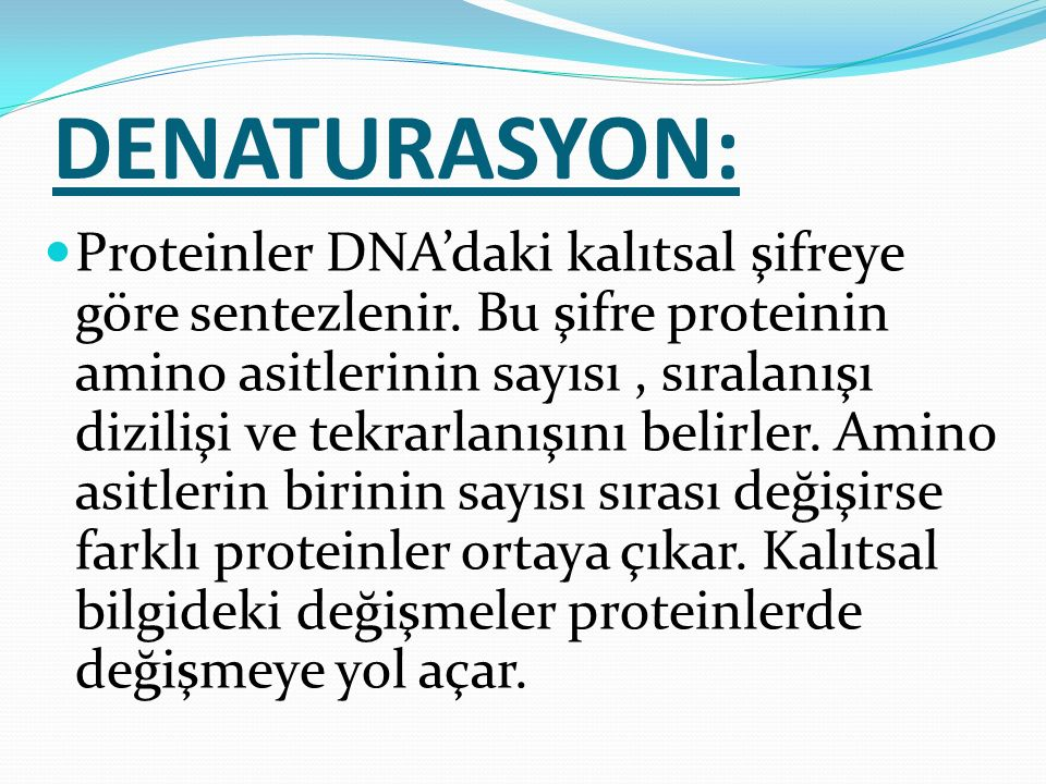 DENATURASYON: Proteinler DNA'daki kalıtsal şifreye göre sentezlenir. Bu şifre proteinin amino asitlerinin sayısı, sıralanışı dizilişi ve tekrarlanışın