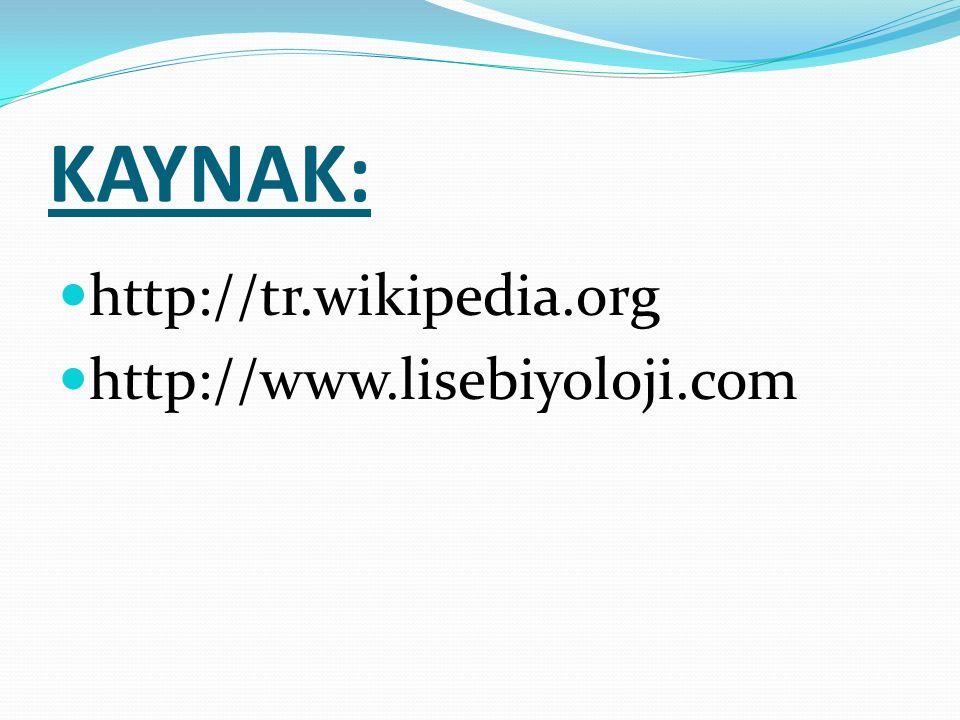 KAYNAK: http://tr.wikipedia.org http://www.lisebiyoloji.com