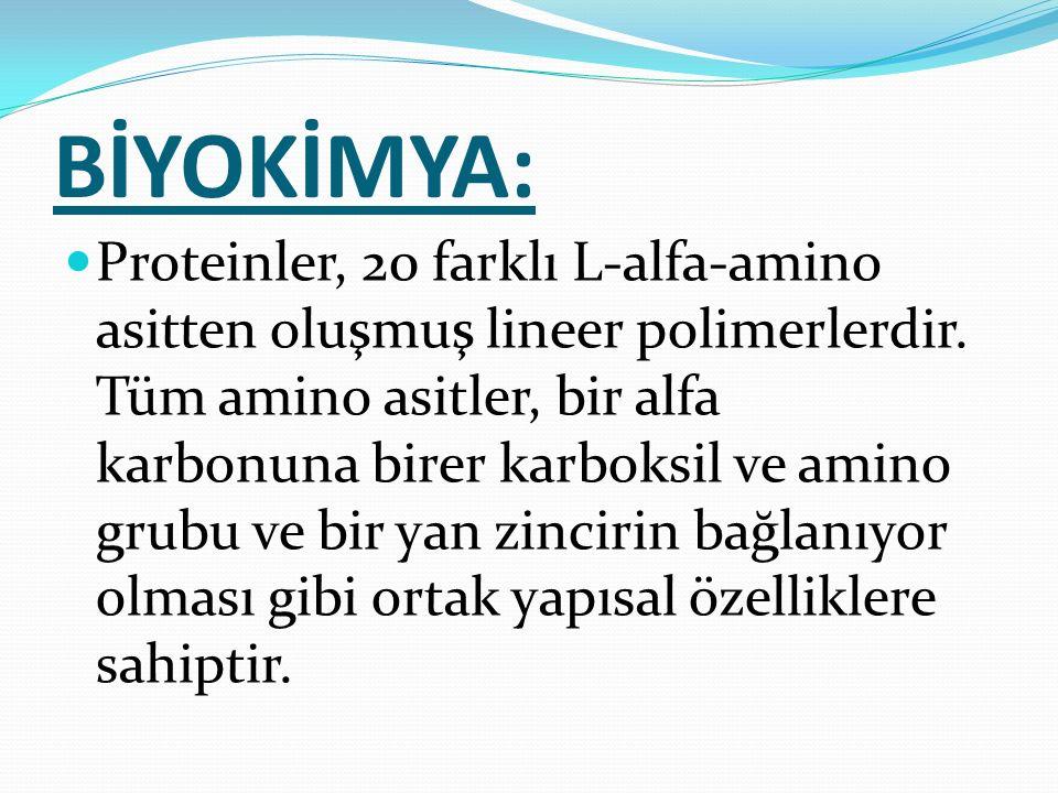 BİYOKİMYA: Proteinler, 20 farklı L-alfa-amino asitten oluşmuş lineer polimerlerdir. Tüm amino asitler, bir alfa karbonuna birer karboksil ve amino gru